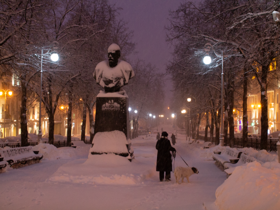 Dzerzhinsky Park, Winter